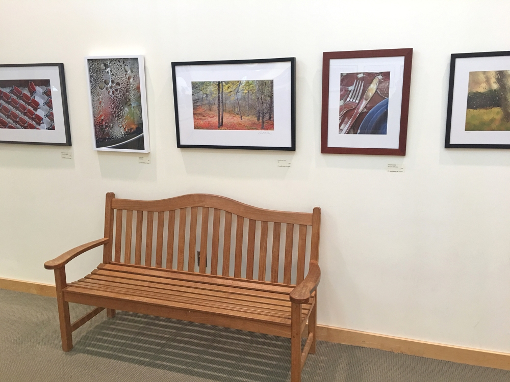 SS Conservatory Art Gallery 2