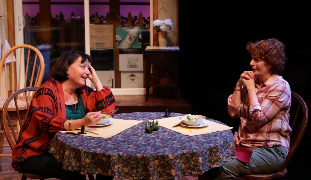 The Roommate Adrianne Krystansky as Robyn as Paula Plum as Sharon at the table
