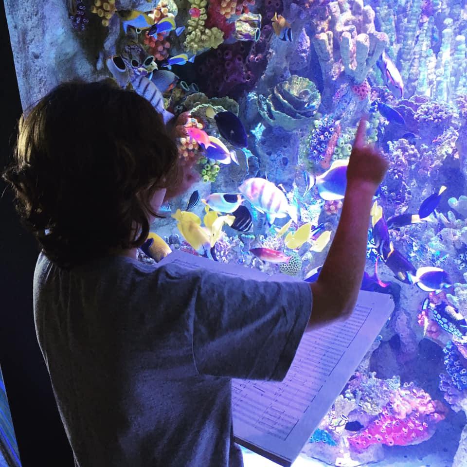 Boston Landmarks Orchestra New England Aquarium