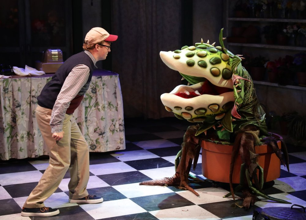 Lyric Stage's 'Little Shop of Horrors' Dan Prior as Seymour and Audrey II